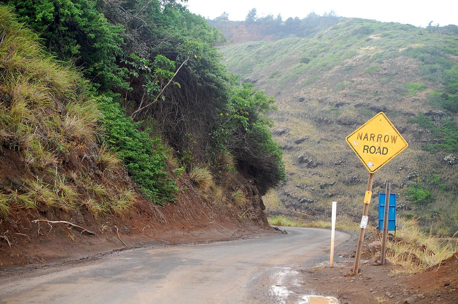 narrow-road--north-maui-amy-fose